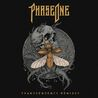 PhaseOne - Transcendency (Remixes) Front Cover.jpg