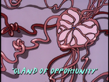 Gland of Opportunity