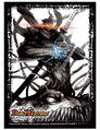 DX Card Protect (Storm Rising!! Dolge's Ninja Art)