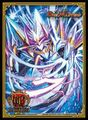 Limited Card Protect (Sr Spellcyclica)