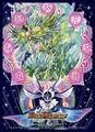 DX Card Protect (Minogami, Beginning Rainbow Emperor & Baragiara, Heavenly Earth Momentum)