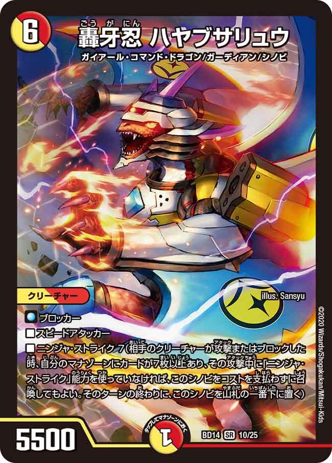 Hayabusaryu, Dragon Ninja