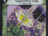 Supporting Tulip