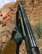 Shotgun dnf2001