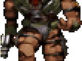 Assault Trooper (DN3D)