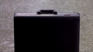Mary's Briefcase.png
