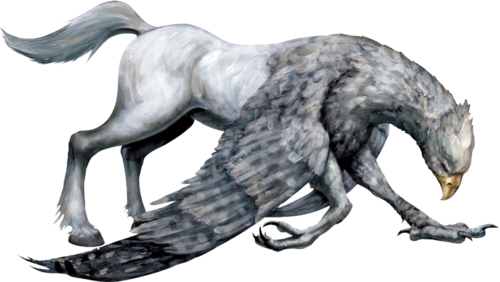 FBHippogriff.png