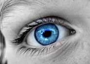 Blue Eye 4