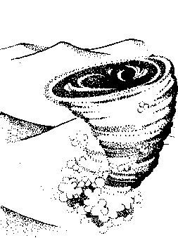 Coriolis storm