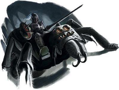 Spider Rider (4e Class)