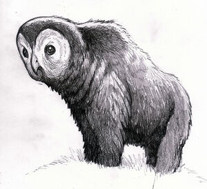 Owlbear1.jpg