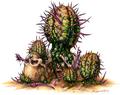 PorcupineCactus
