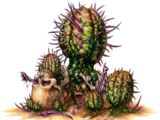 Porcupine cactus