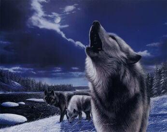 KD0704Howling-Wolves-Posters.jpg