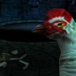 Chicken Level