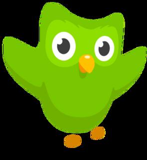 Duolingo Wiki