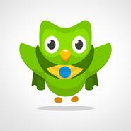 BR OWL