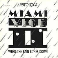 288 when the rain comes down song single andy taylor duran duran wikipedia MCA RECORDS · USA · L33-17196 discography discogs lyric wiki.jpg