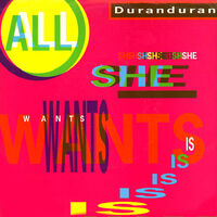 All she wants is duran duran wikipedia song single.jpg