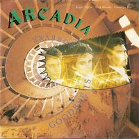 266 goodbye is forever song single duran duran band arcadia wikipedia EMI-PATHE MARCONI · FRANCE · 2010667 PM 102 discography discogs lyric wiki.jpg