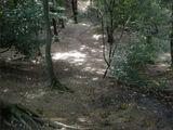 Witte Wievenkuil