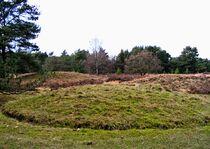 Grave hill in Boshoverheide