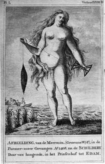 Groennewijf, a painting depicting the Purmermeer mermaid.
