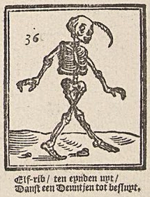 Elf-Rib as depicted by Isaac Vincentsz van der Vinne, 1730.