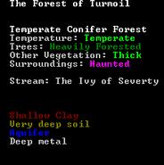 Nawiedzony las