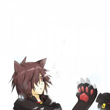 Cheshire.Cat.(Pandora.Hearts).600.690965.jpg