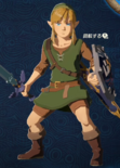 Link Alternate Outfit 15 (HWAC)