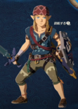 Link Alternate Outfit 11 (HWAC)