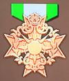Bronze Badge (FEW).png