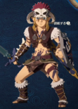 Link Alternate Outfit 12 (HWAC)