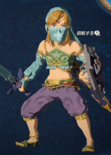 Link Alternate Outfit 6 (HWAC)