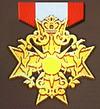 Gold Badge (FEW).png
