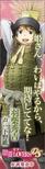 Hideyoshi Hashiba 2 (TSL)