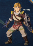 Link Alternate Outfit 4 (HWAC)