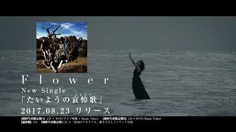 Flower_-_Flower_Theater_2016_~THIS_IS_Flower~_THE_FINAL_(Live_Video_Digest)