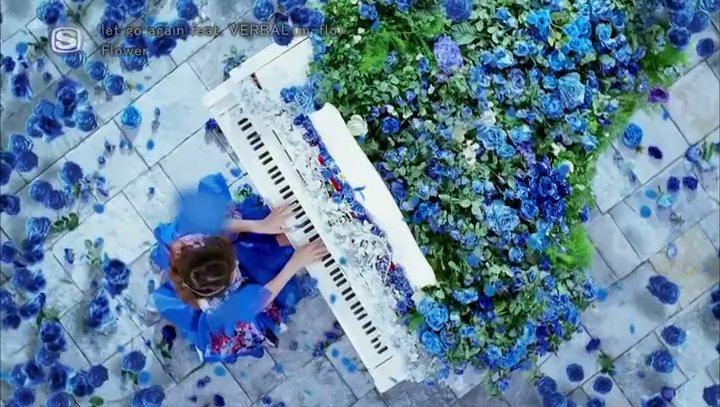 Flower - let go again (Music Video)