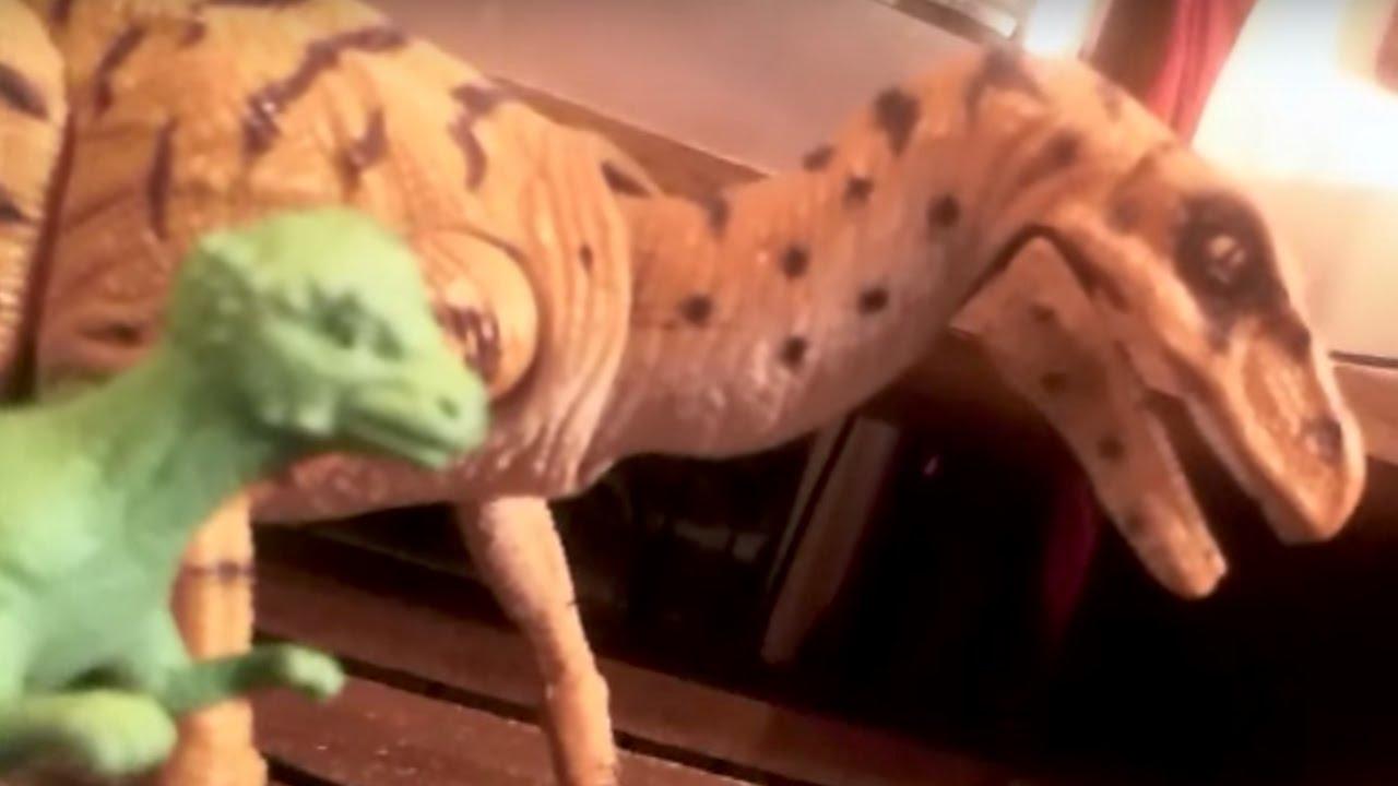 Reddit Defends Dinosaur Kid Against An Internet Troll | What's Trending Now