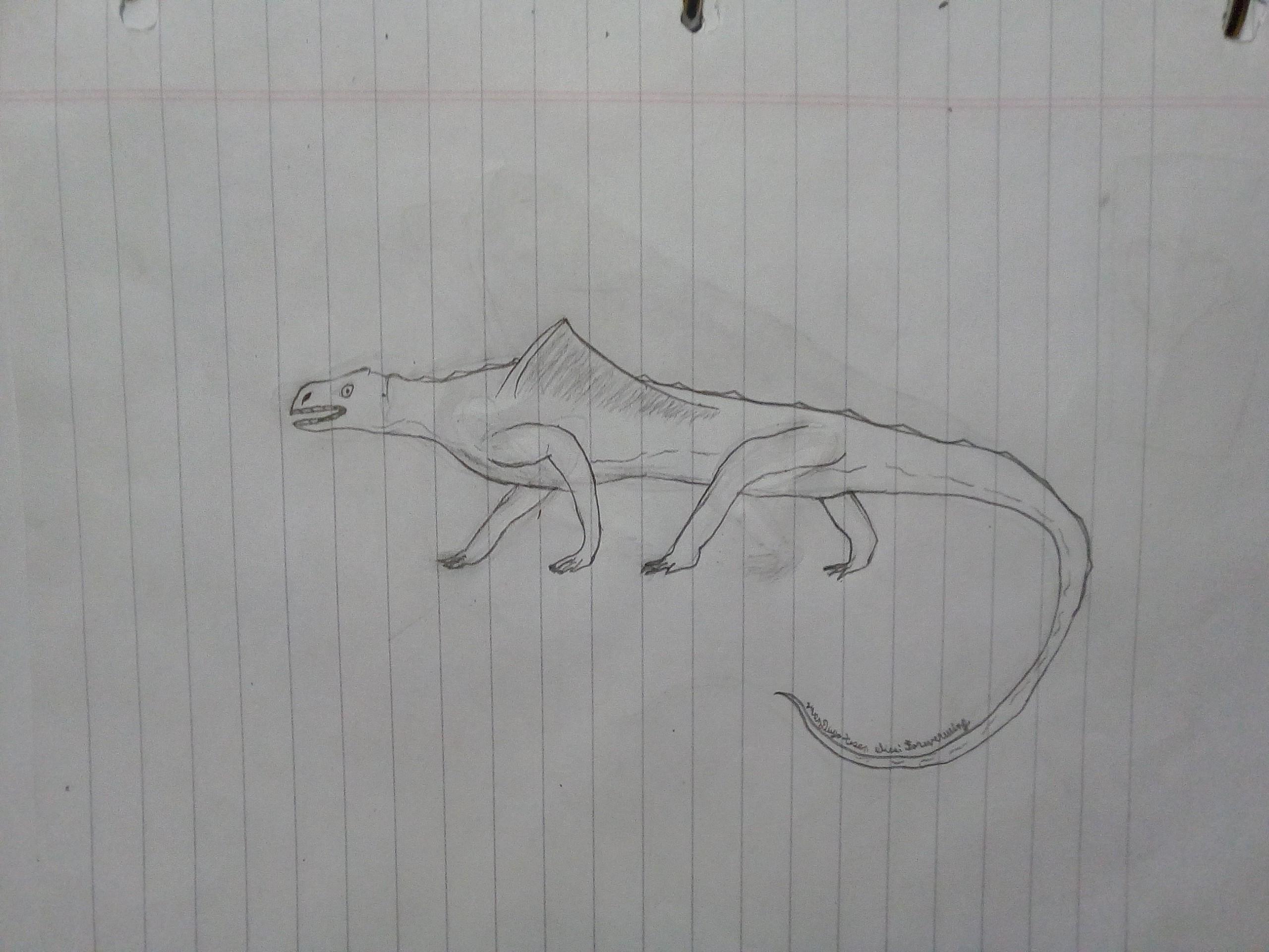 Origen y Evolución de los Dragones Parte 1