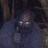 Toxic Oskar's avatar