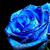 BlueRose1405
