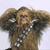 Wookie5067