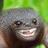 PricelessCHICKEN's avatar