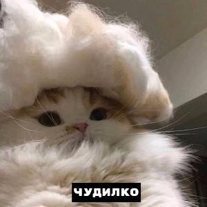 Anya Nrytsnur's avatar