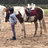 Horsecrazygal109's avatar