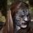 Balam Bunty's avatar