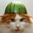 Nerdy Seawing's avatar